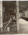 "This is an image of1987/13/73 ""Interior of 'Standard' Salmon Cannery, Skeena RiverB.C. 2/9/90""  courtesy of PAM."